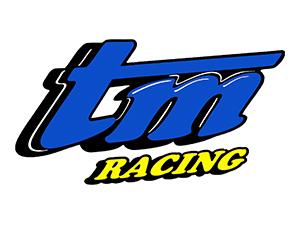 Motori e ricambi TM